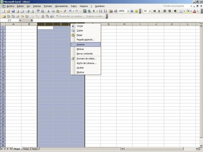 Insertar columnas en Excel