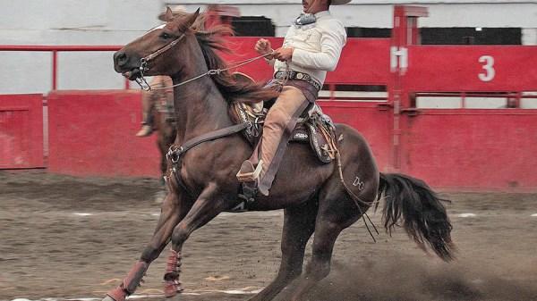 """Juan Villaseñor de Tres Regalos """"B"""" pegó la mejor cala de caballo al momento con 47 puntos"""