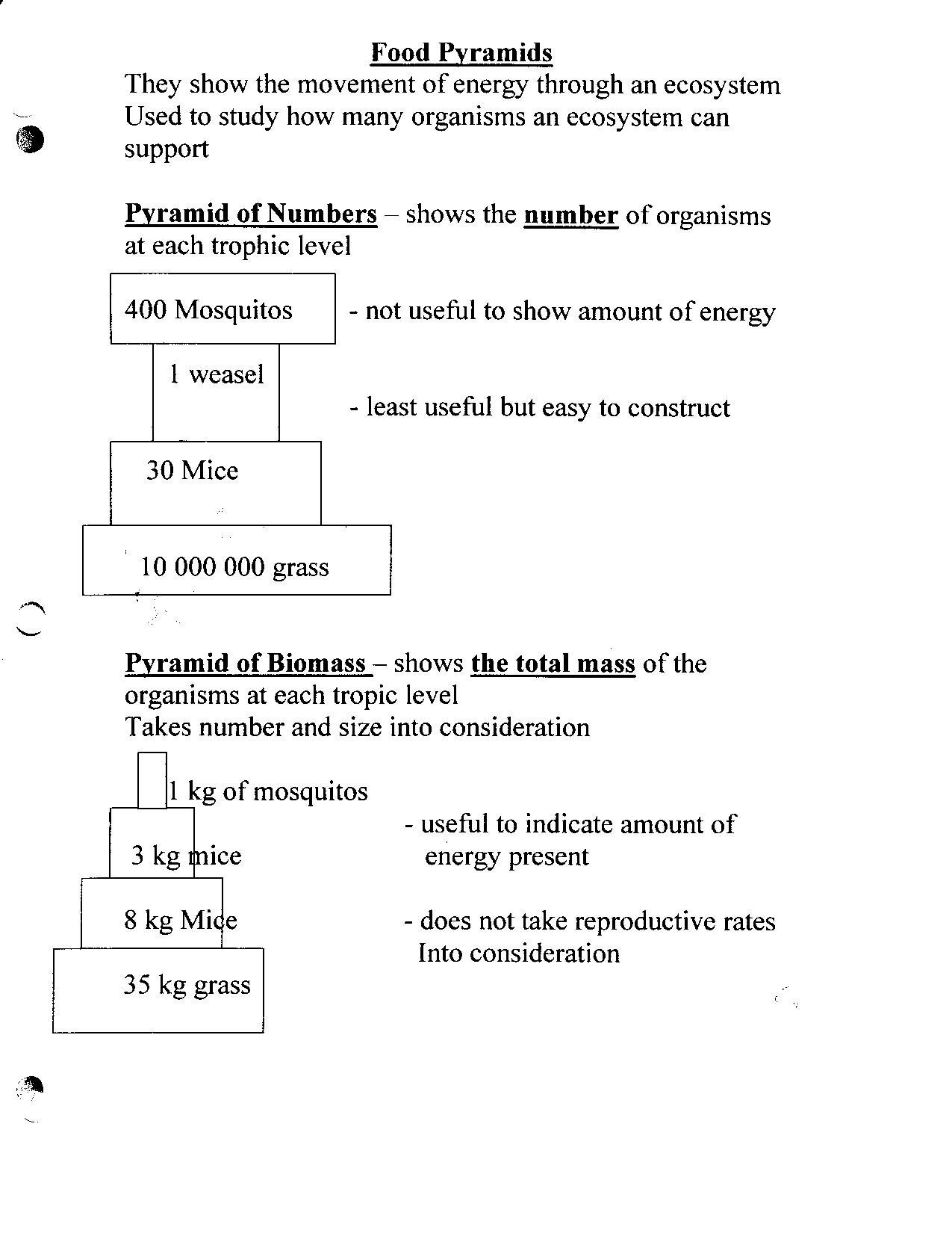 Bill Nye Energy Worksheet Answers Excelguider