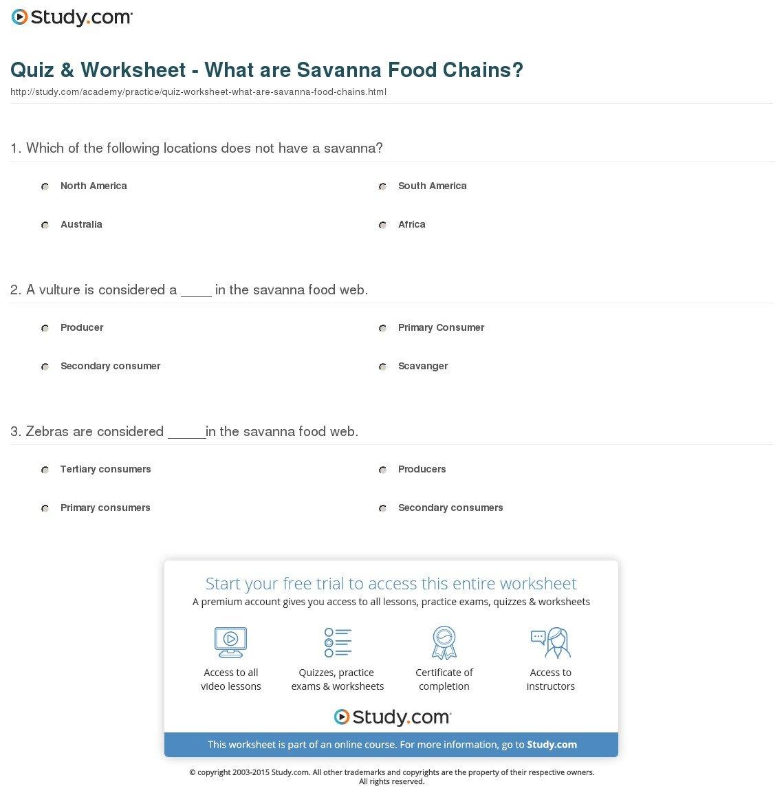 Food Web Practice Worksheet