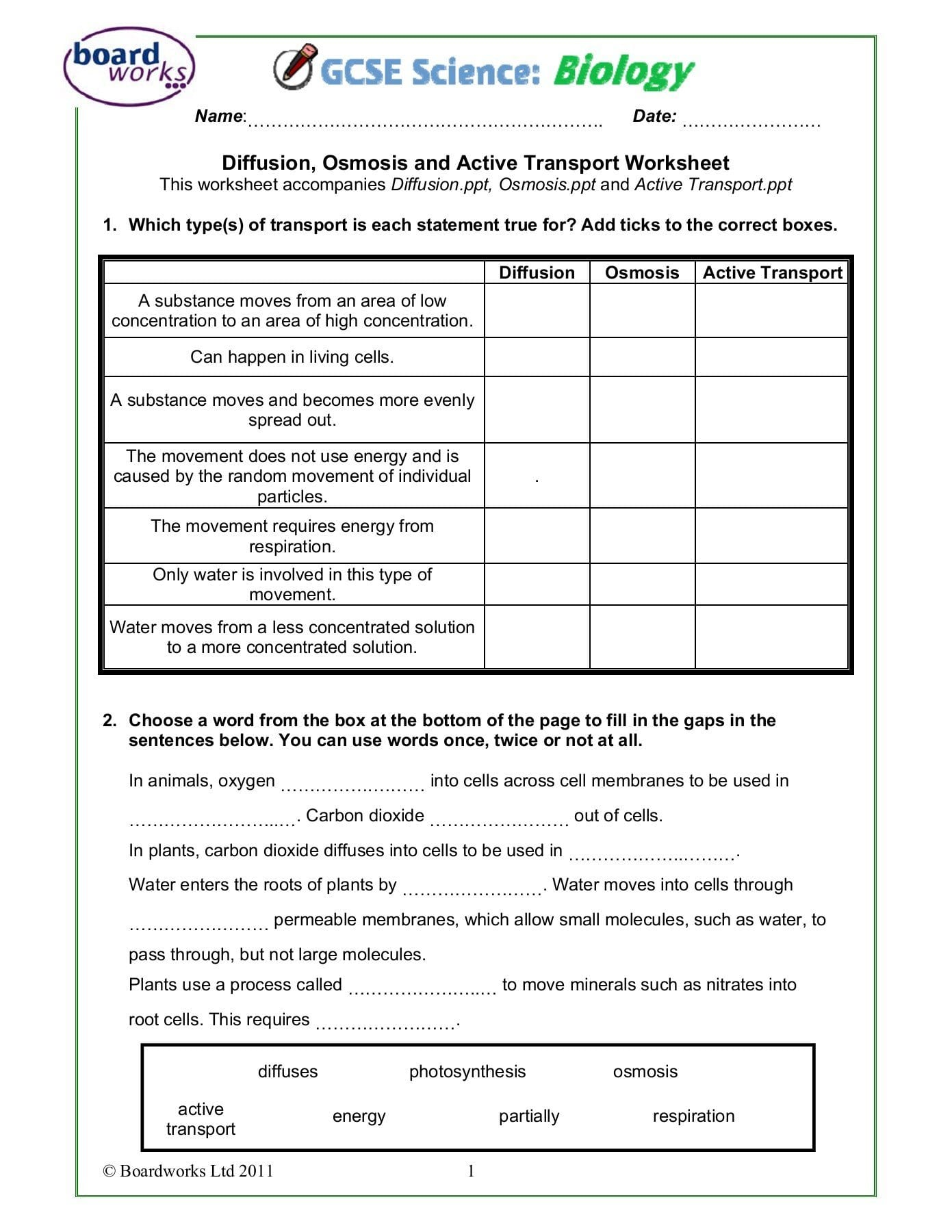 Active Transport Worksheet