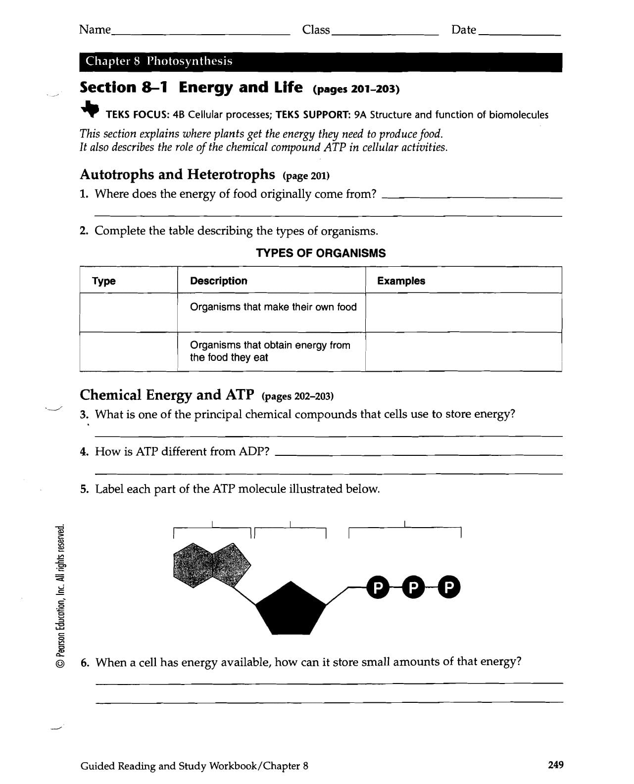 Section 8 1 Energy And Life Worksheet Answer Key