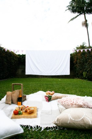 Outdoor pinic cinema
