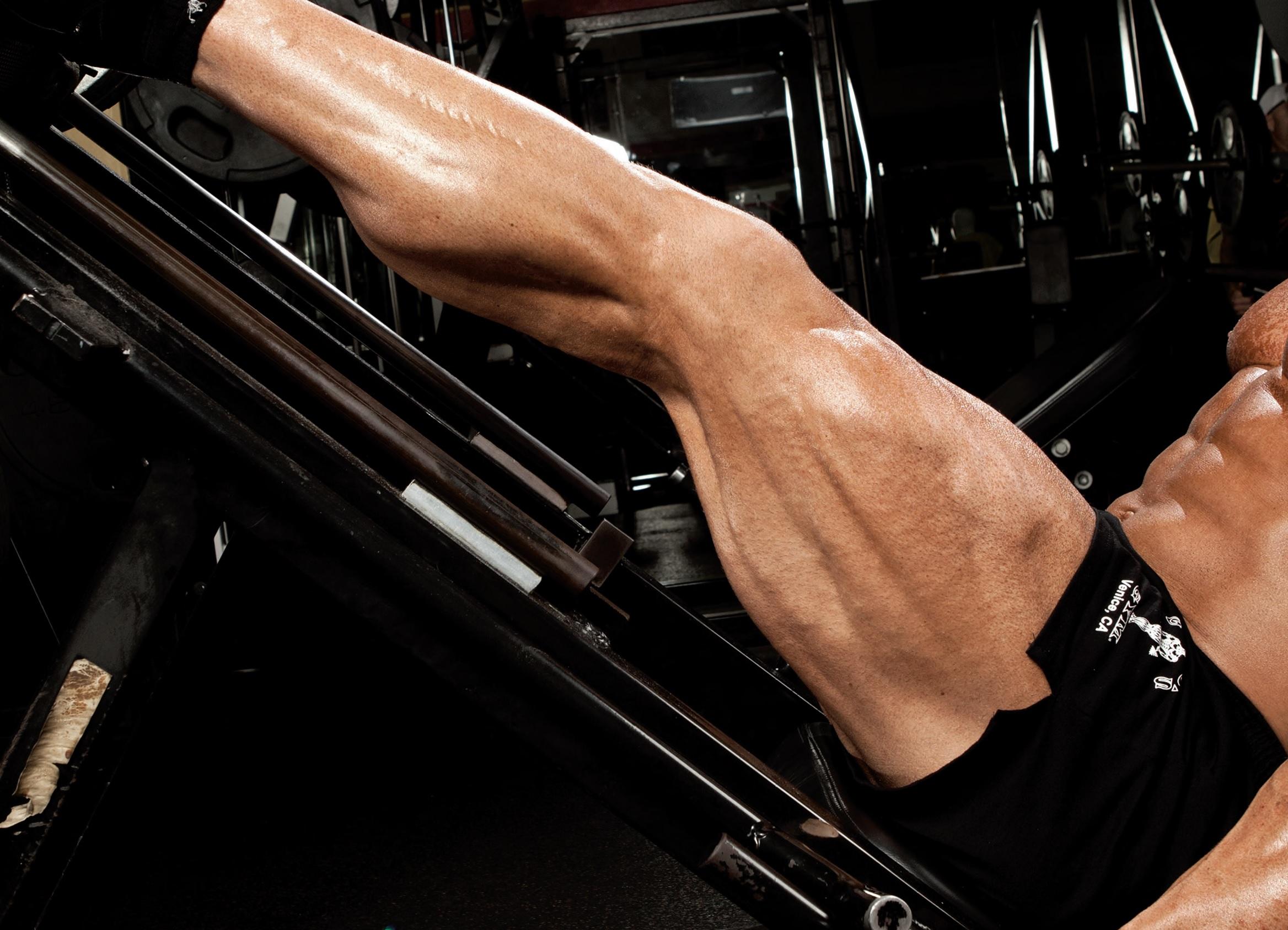 I 10 Migliori Esercizi Per Le Gambe Excellent Style
