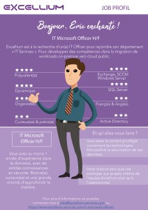 it-microsoft-officer