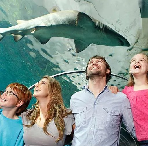 SCHOOL HOLIDAY SPECIALS | SPEND QUALITY TIME WITH YOUR FAMILY