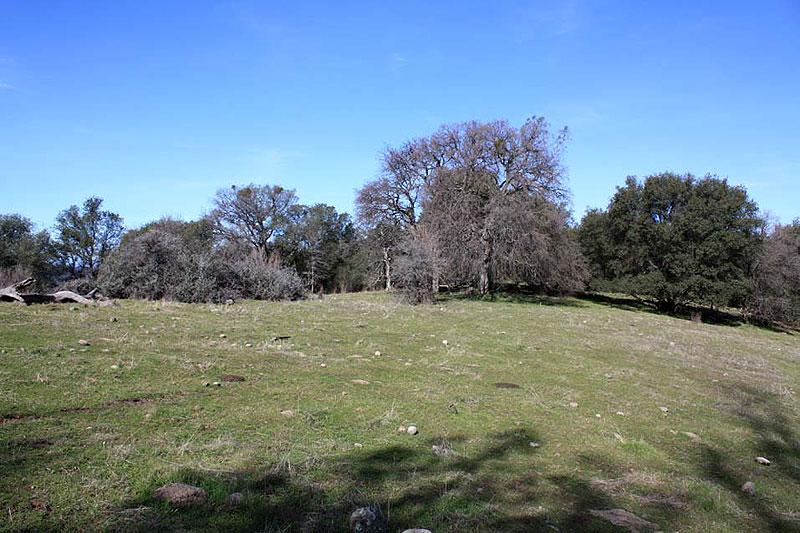 ranch5 (4)