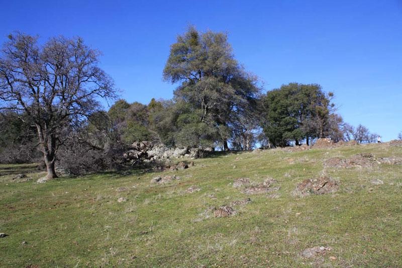 ranch9 (1)