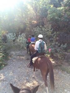 quiz ride 2015 1