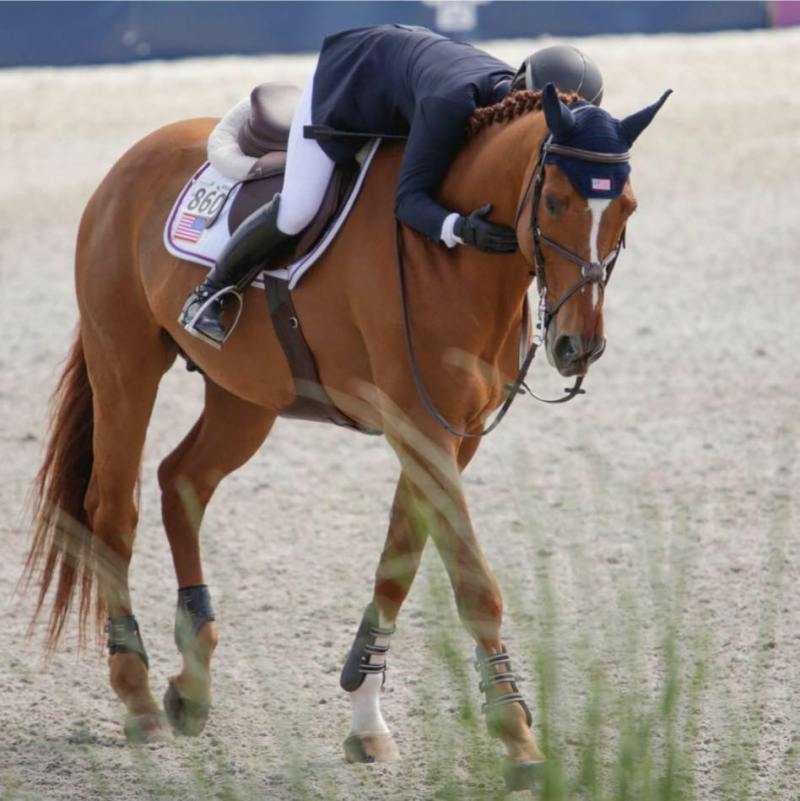 English Rider 860 on an Excel Supplements Performance Horse