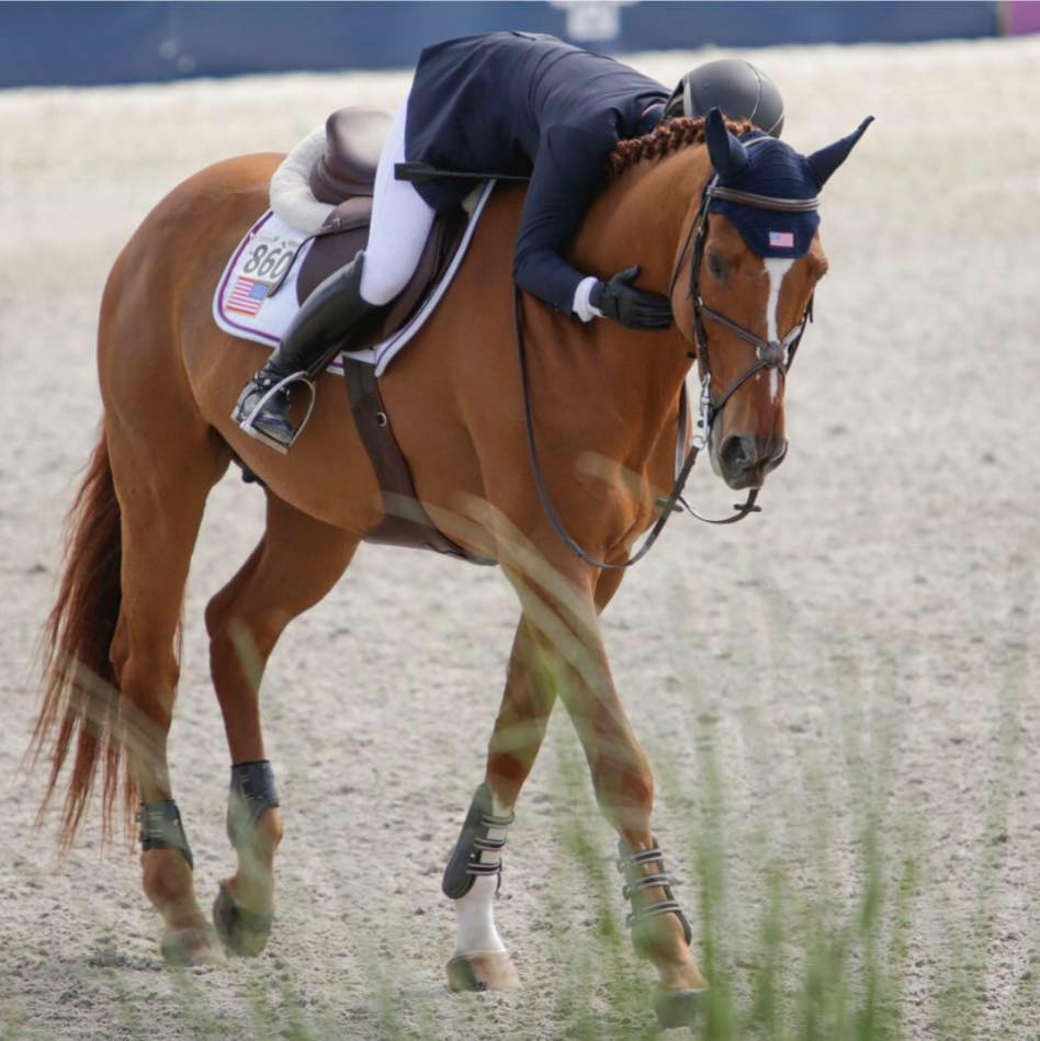 Partners English Rider 860 on an Excel Supplements Performance Horse