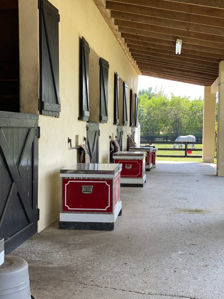 Horse boarding with turnout