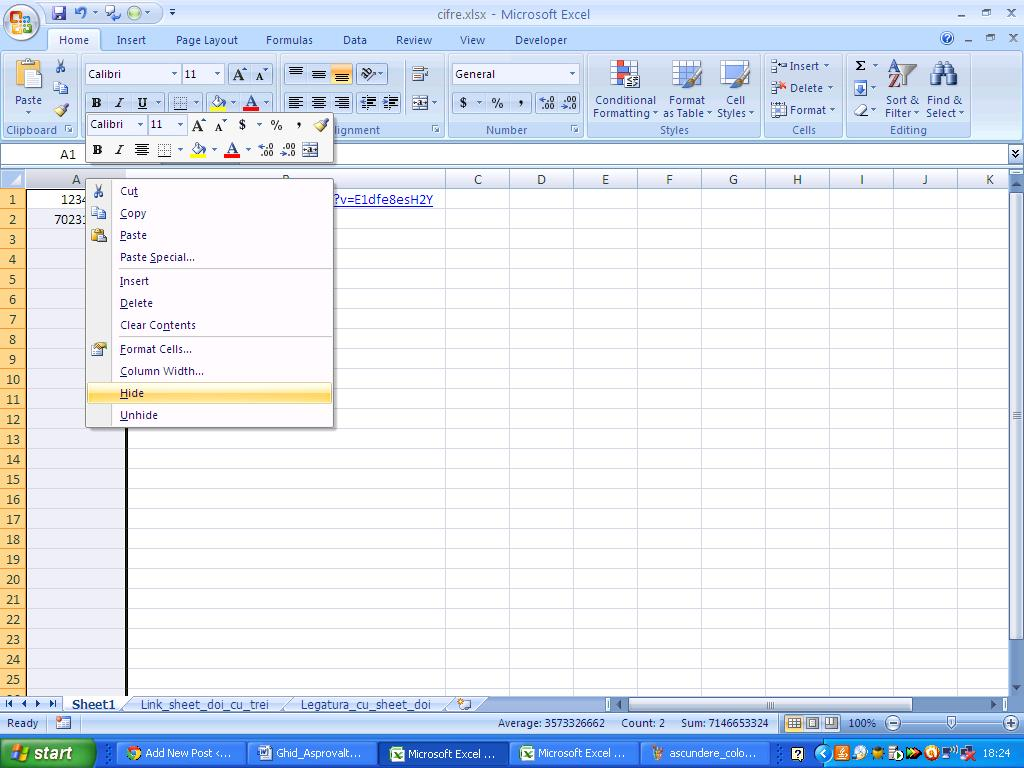 Introducere Excel