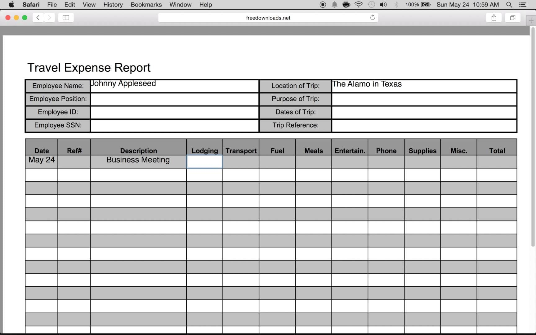Excel Expense Reports