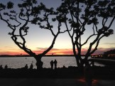San-Diego-waterfront-2014-3264-copyright-Shelagh-Donnelly