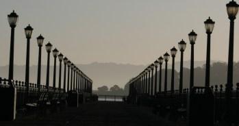 San Fran 7953 Copyright Shelagh Donnelly
