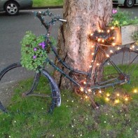 Sparkly bike Copyright Shelagh Donnelly