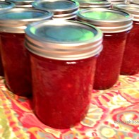 Shelagh's Strawberry Jam Copyright Shelagh Donnelly