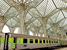 Lisbon Train Copyright Shelagh Donnelly