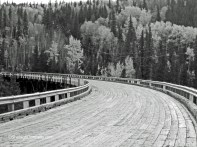 Kiskatinaw Bridge Alaska Hwy 0017 Copyright Shelagh Donnelly