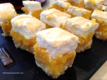 Lemon Squares 2327 Copyright Shelagh Donnelly