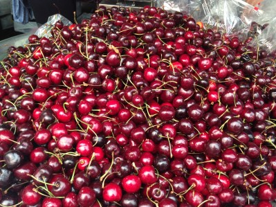 BC Cherries 1193 Copyright Shelagh Donnelly