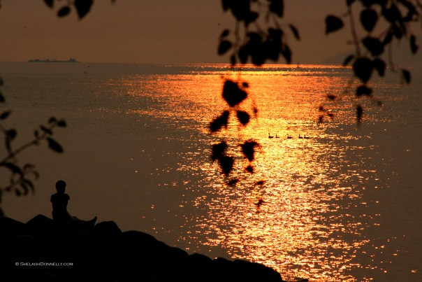 Sunset Solitude 5263 Copyright Shelagh Donnelly