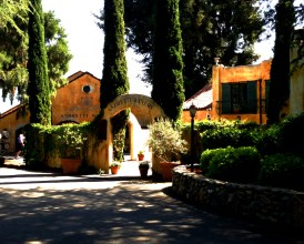 Napa Valley Andretti Winery 1036 Copyright Shelagh Donnelly
