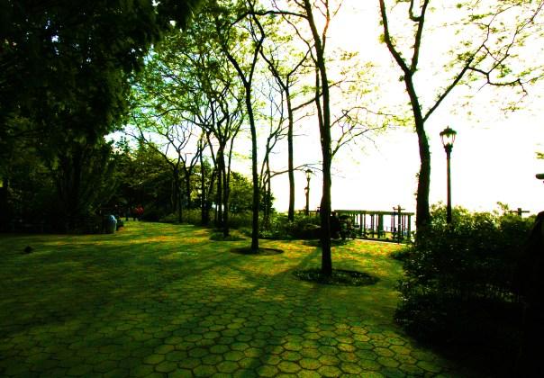 Battery Park 5988 Copyright Shelagh Donnelly