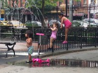 Hell's Kitchen Park 9628 Copyright Shelagh Donnelly