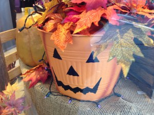 halloween-6003-copyright-shelagh-donnelly