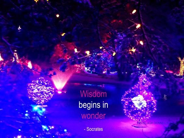 van-dusen-at-christmas-9896-copyright-shelagh-donnelly
