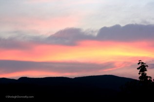 Sunshine Coast Sunset 8500 Copyright Shelagh Donnelly