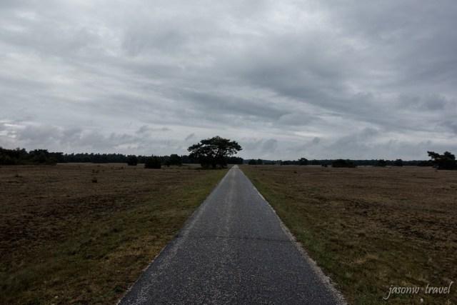 荷蘭梵高森林公園