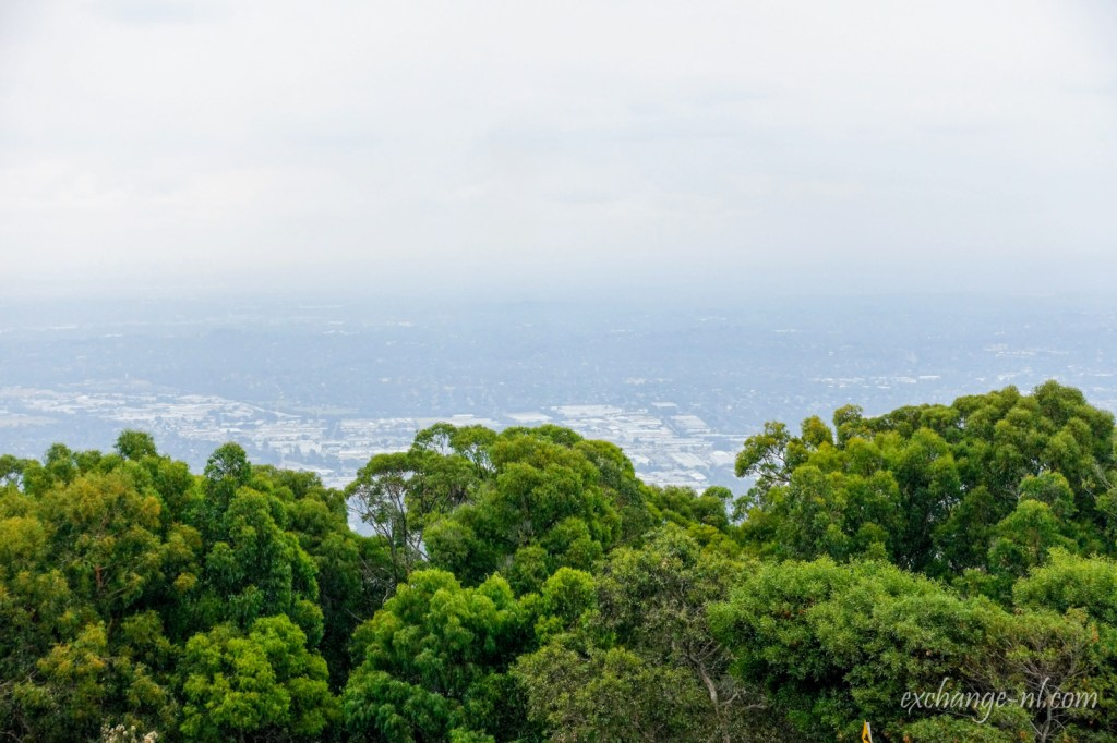 墨爾本丹頓農山山頂景色 View from SkyHigh Mount Dandenong, Melbourne