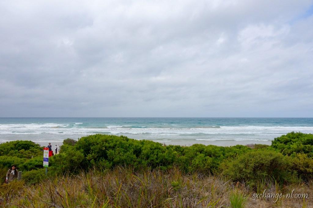 大洋路沙灘 Beach along Great Ocean Road