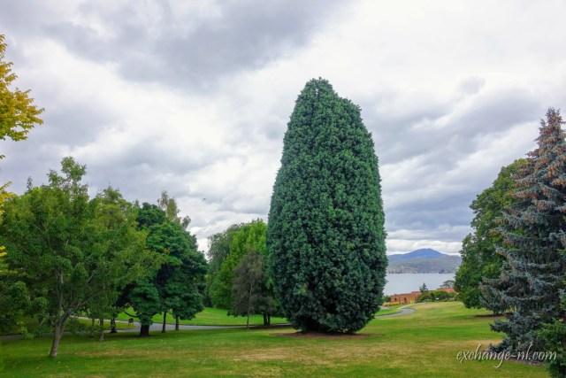 荷伯特塔斯曼尼亞皇家植物園 Royal Tasmanian Botanical Gardens, Hobart