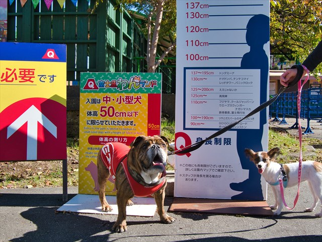 富士急わんランド、ペットの入園条件あり