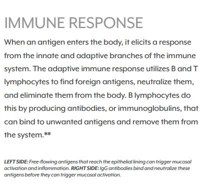 MegaIG Immune Response