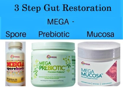 3 step Gut Restoration