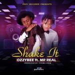 [Music] Ozzybee ft. Mr Real – Shake It