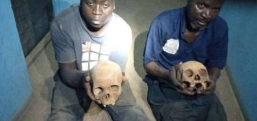 Two Suspected Ritualists Apprehended With Human Skulls