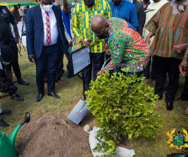 The president planting a tree to cut sod for the nationwide tree planting project