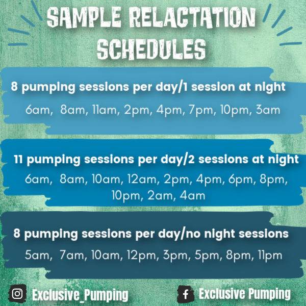 Sample Relactation Schedules | 8 pumping sessions per day/1 session at night: 6am, 8am, 11am, 2pm, 4pm, 7pm, 10pm, 3am | 11 pumping sessions/2 sessions at night: 6am, 8am, 10am, 12pm, 2pm, 4pm, 6pm, 8pm, 10pm, 2am, 4am | 8 pumping sessions per day/no night sessions: 5am, 7am, 10am, 12pm, 3pm, 5pm, 8pm, 11pm