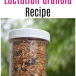 The Best Healthy Lactation Granola Recipe