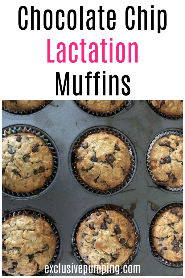 Chocolate Chip Lactation Muffins