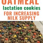 Monster Oatmeal Lactation Cookies for Increasing Milk Supply