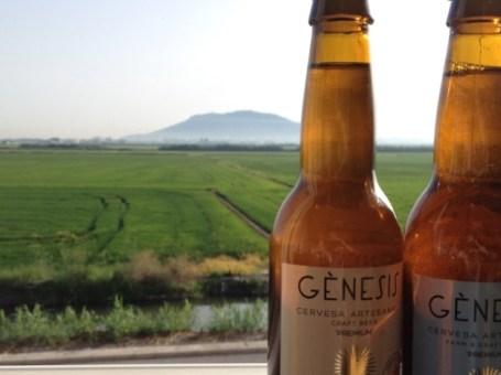 Visita a la fábrica de cerveza, almuerzo y cata en Valencia