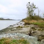 Vue sur la Loire en direction du Pellerin depuis l'écluse de la Martinière