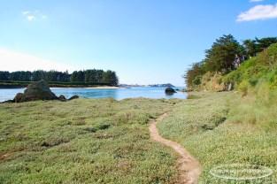 Vue sur l'Anse de Porz Morvan, Plestin-les-grêves